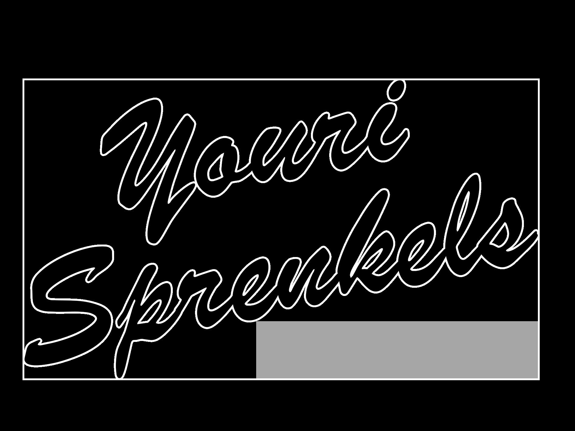 Youri Sprenkels